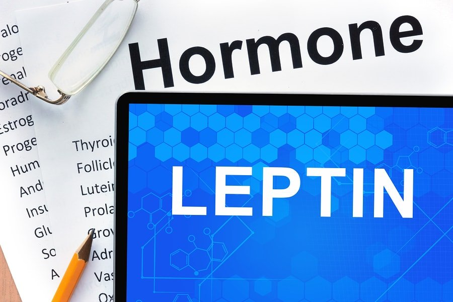 What is Leptin? Definition, Function & Normal Levels