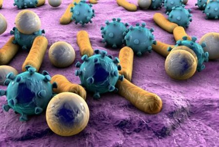 Lose weight safely and quickly picture 9