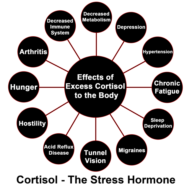Cortisol:10 Negative Health Effects + Surprising Benefits