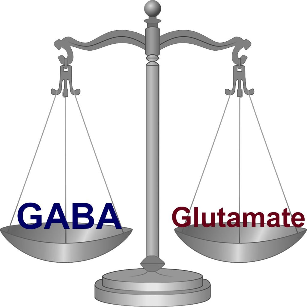 GABA glutamate balance