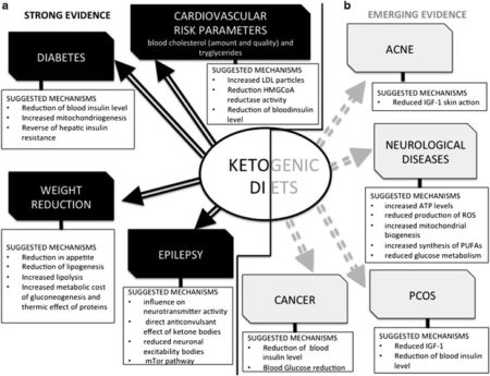 Health Benefits of Ketogenic Diets, source: https://www.ncbi.nlm.nih.gov/pmc/articles/PMC3826507/