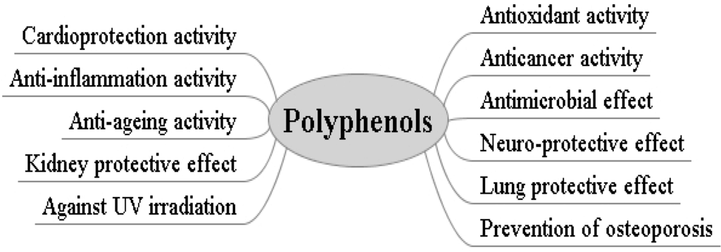 Phenylalanine definition