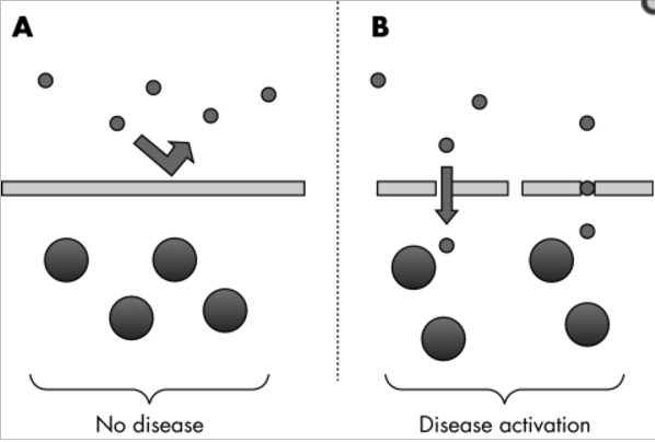 Disease initiation process when there is leaky gut