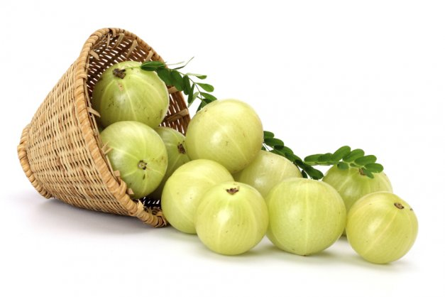 Image result for amla fruit
