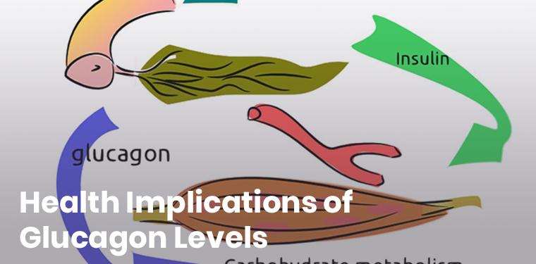 Glucagon levels