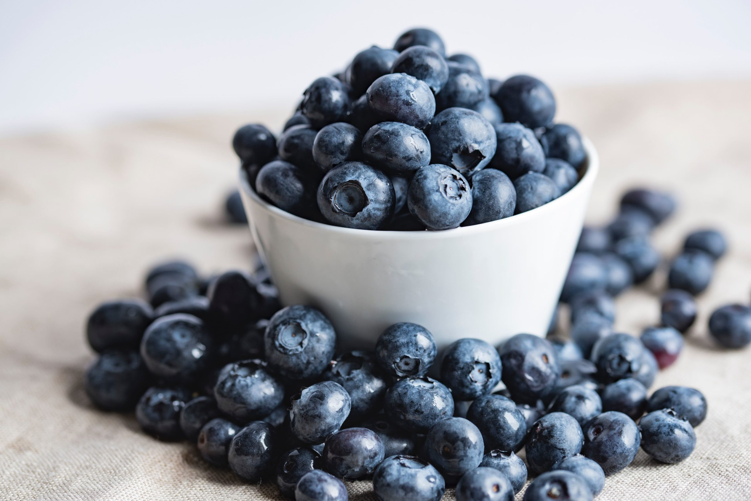 Blueberries are lower in anthocyanin antioxidants than bilberries