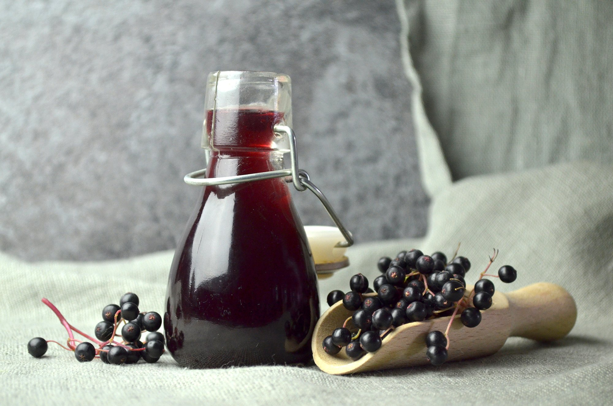 Elderberry Infection Could it Help with COVID 19