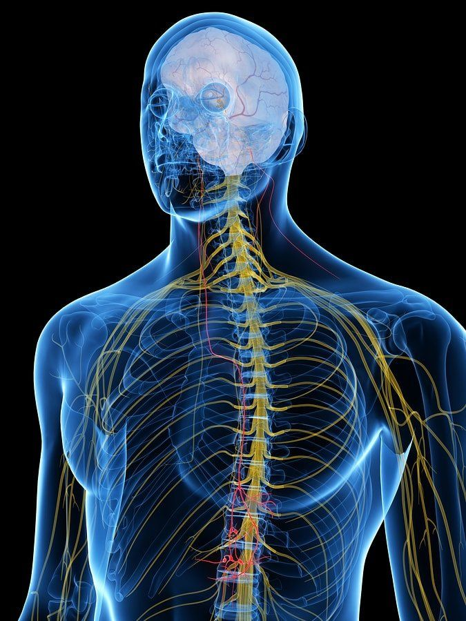 30 Ways to Stimulate Your Vagus Nerve + Functions & Disorders