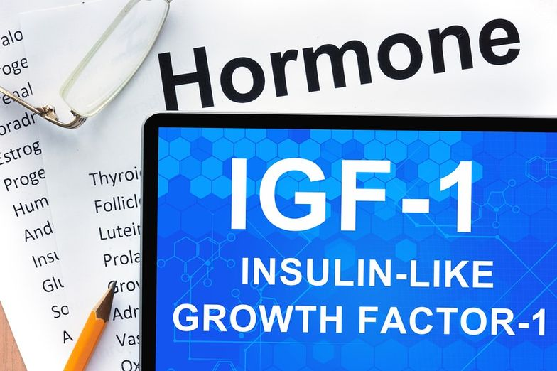 Surprising Truth About IGF-1 + Foods, Side Effects, Cancer - SelfHacked