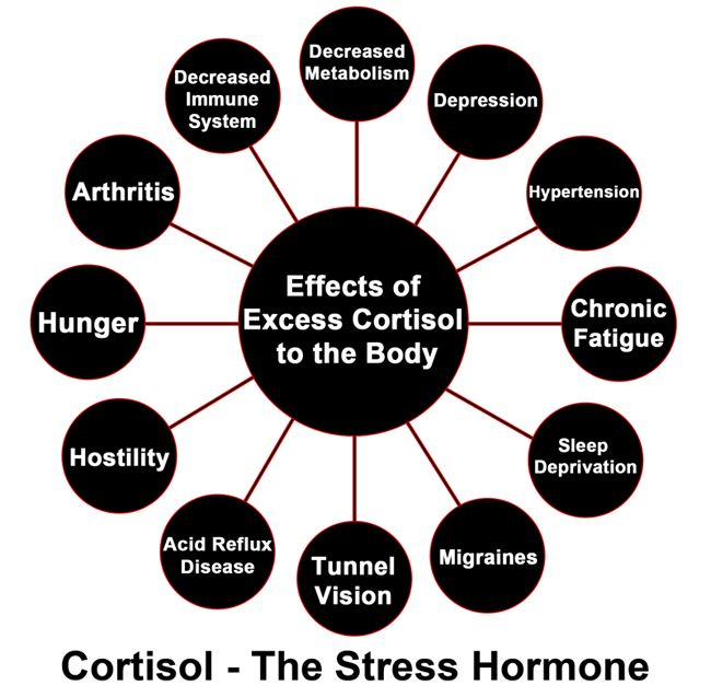 Cortisol:10 Negative Health Effects + Surprising Benefits - SelfHacked