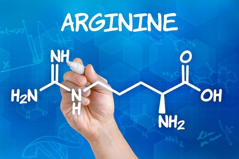 13 Proven L-Arginine Health Benefits + Dosage, Side Effects - SelfHacked