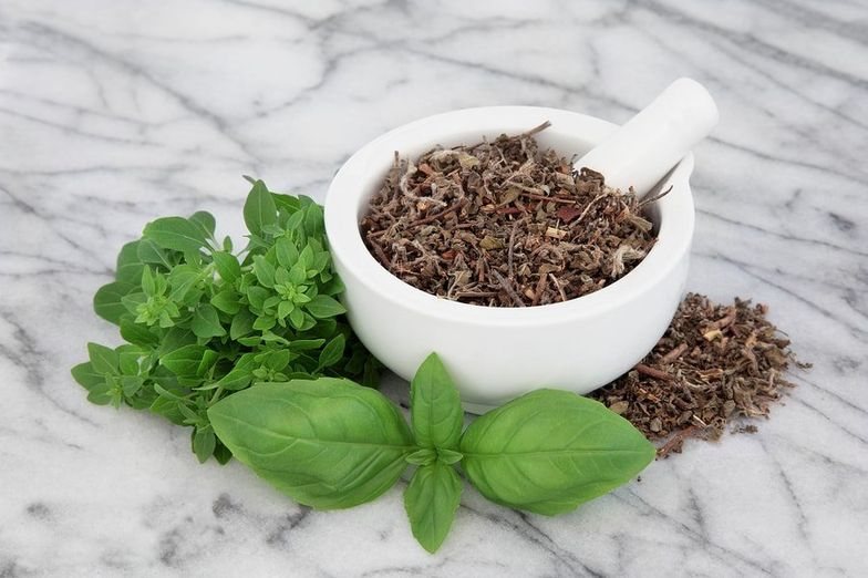 27 Amazing Health Benefits of Tulsi & Holy Basil - SelfHacked