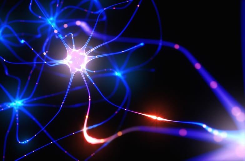 29 Ways to Increase Neurogenesis - SelfHacked