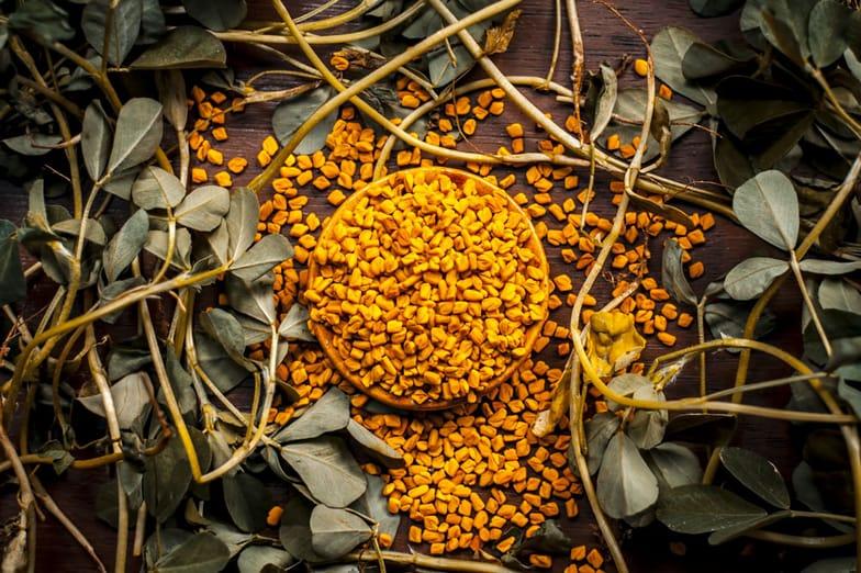 13 Fenugreek Benefits (Seeds, Leaves, Tea) + Side Effects