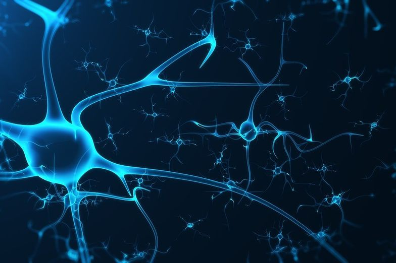 9 Potential Uses of Phenylpiracetam + Dosage & Side Effects
