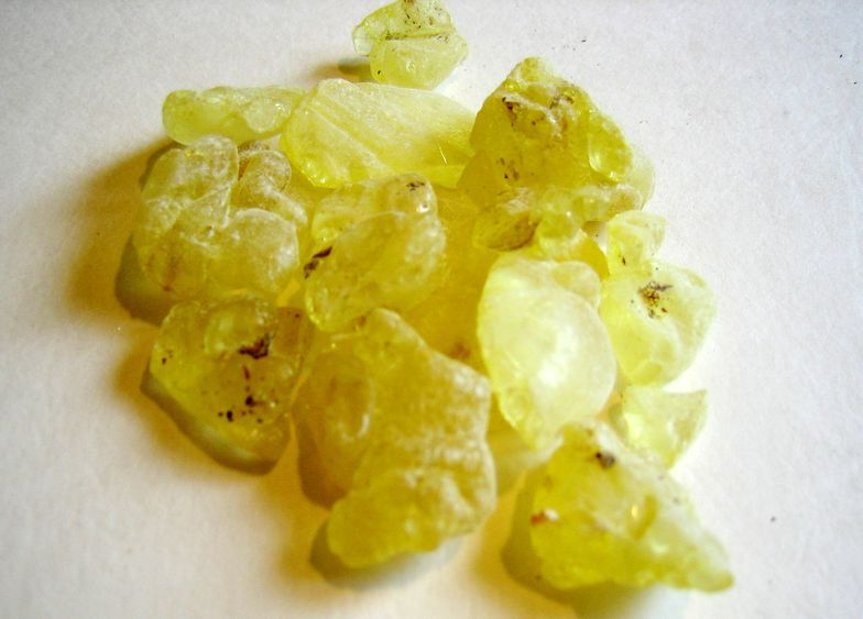 11 Mastic Gum Benefits + Side Effects, Dosage - SelfHacked