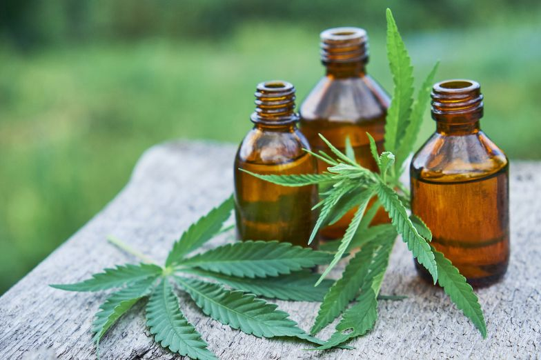 Hemp Oil vs CBD Oil: What's the Difference? - SelfHacked